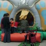 Castell inflable – Piscina de boles conill