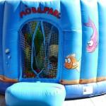 Castell inflable piscina de boles peixera